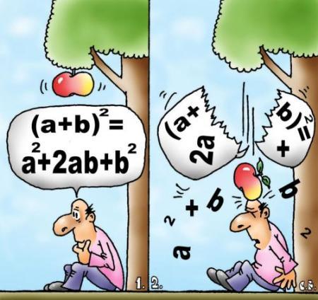 Matematica, poesia e identidad cultural estan relacionadas.